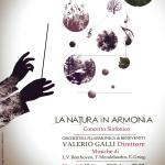 locandina-nuova-galli_p